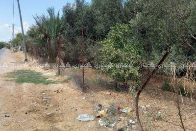 قطعة أرض للبيع مشجره وبها غرفه مع بير مياه