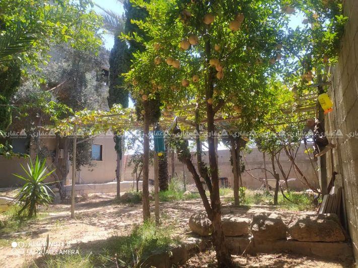 بيت للبيع جنوب محطة تحلية بلدية البريج